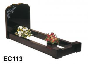 EC113